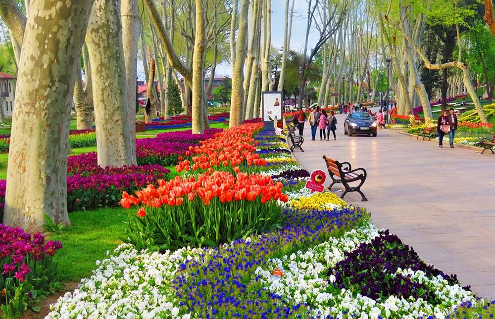 Image result for Gülhane Park